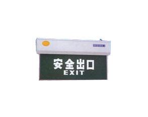 HYDD16挂式安全诱导灯