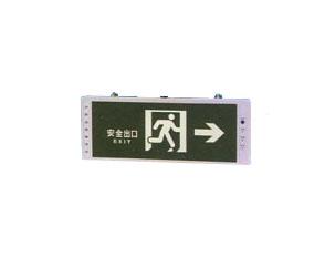 HYDD14挂式安全诱导灯