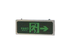 HYDD12挂式安全诱导灯