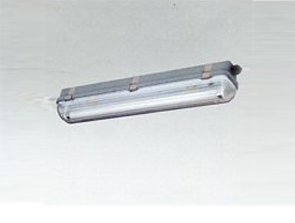 HYGS118防水防尘防腐荧光灯