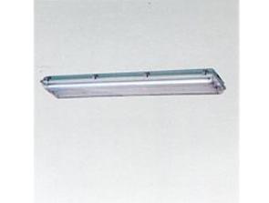 HYGS218防水防尘防腐荧光灯