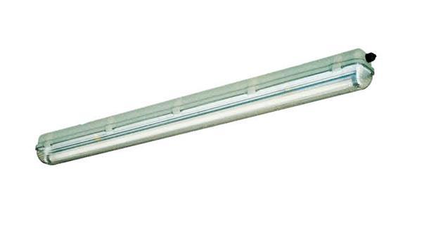 HYGS136 128系列 防水防尘防腐荧光灯