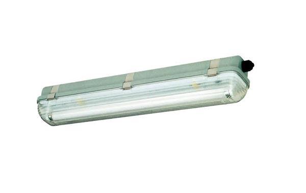 HYGS218系列 防水防尘防腐荧光灯