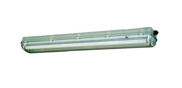 HYGS236 228系列 防水防尘防腐荧光灯