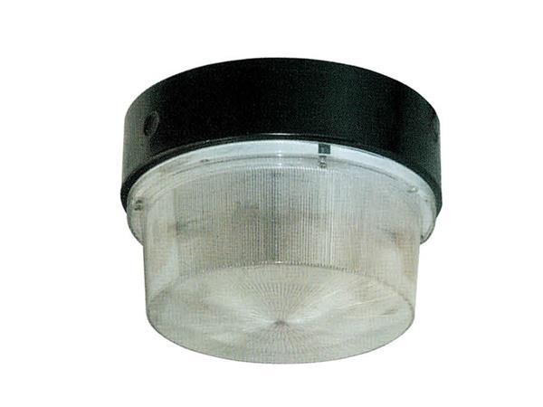 HGC422系列 防水防尘防腐吸顶灯(油站灯)